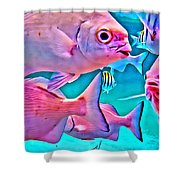 Fish Frenzy Shower Curtain