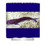 Fish In Water Shower Curtain