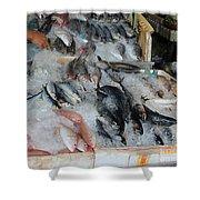 Fish Market Shower Curtain
