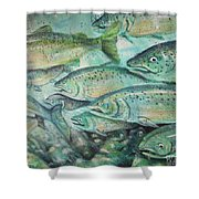 Fish On The Wall Shower Curtain