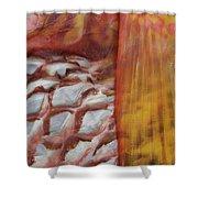 Fish Skin Shower Curtain
