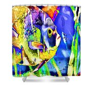 Fish Snack Shower Curtain