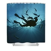 Fish Swim Around A Diver In The Cayman Shower Curtain