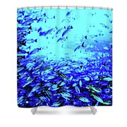 Fish Traffic Shower Curtain