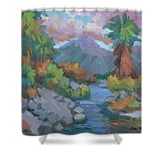 Fish Trap Indian Canyon Shower Curtain