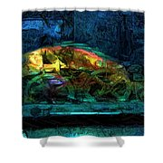Fish Wheels Shower Curtain