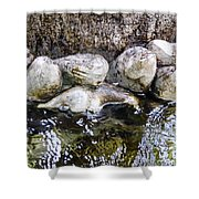 Fish Wives Fountain Detail Shower Curtain