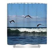 Fishermen  Shower Curtain