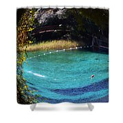 Fisheye Palm And Springs Shower Curtain