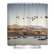 Fishing Boats And Blue Herons Shower Curtain