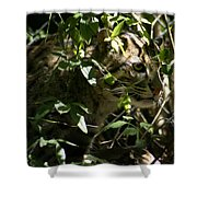 Fishing Cat Shower Curtain