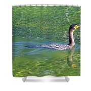 Fishing In The Springs Shower Curtain