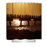 Fishing Off The Pier At Fort De Soto At Dusk Shower Curtain