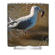 Fishing Was Good Shower Curtain