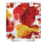 Five Autumn Leaves Shower Curtain