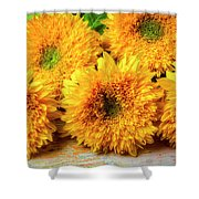 Five Exotic Sunflowers Shower Curtain