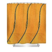 Five Fender Guitars Shower Curtain