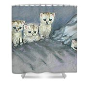 Five Kitties Shower Curtain