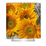 Five Moody Sunflowers Shower Curtain