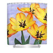 Five Of A Kind Shower Curtain