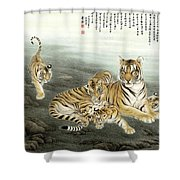 Five Tigers Shower Curtain