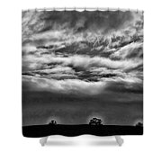 Five Trees In Clouds Shower Curtain