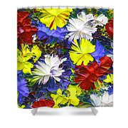 Abstract Fl12016 Shower Curtain