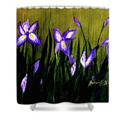 Flag-roots Shower Curtain