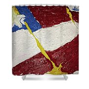 Flag Section Shower Curtain