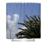 Flag With Pink Flowers Shower Curtain