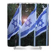 Flags Of Israel Blowing In The Wind Shower Curtain