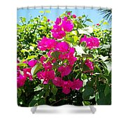 Flamante Shower Curtain