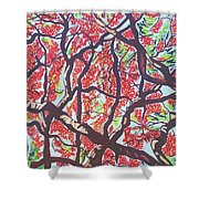 Flamboyant Beauty Shower Curtain