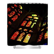 Flamboyant Stained Glass Window Shower Curtain