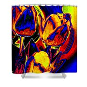 Flamboyant Tulips Shower Curtain