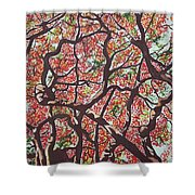 Flamboyants In The Sky Shower Curtain