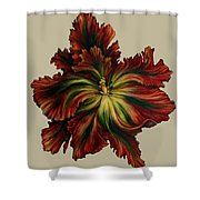 Flame Red Tulip II Shower Curtain