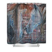 Flamenco Shower Curtain by Jani Freimann