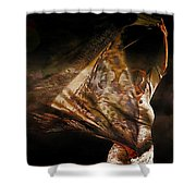 Flamenco Traditional Dance Shower Curtain
