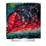 Flaming Fall Color Shower Curtain