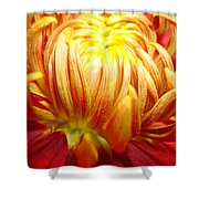 Flaming Shower Curtain