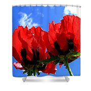 Flaming Skies Shower Curtain