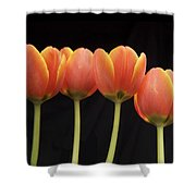 Flaming Tulips Shower Curtain