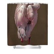 Flamingo -2 Shower Curtain