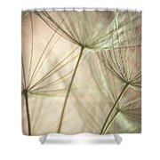 Flamingo Dandelions Shower Curtain