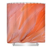 Flamingo Flow 4 Shower Curtain