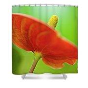 Flamingo Flower 2 Shower Curtain