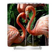 Flamingo Heart Shower Curtain