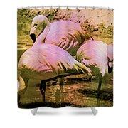 Flamingo - Id 16217-202804-4625 Shower Curtain
