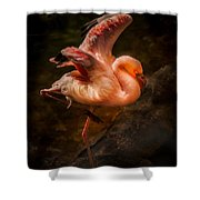 Flamingo In Darkness Shower Curtain